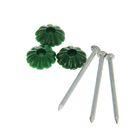 Гвоздь с декоративной шляпкой, зеленый, в пакете 80 шт.