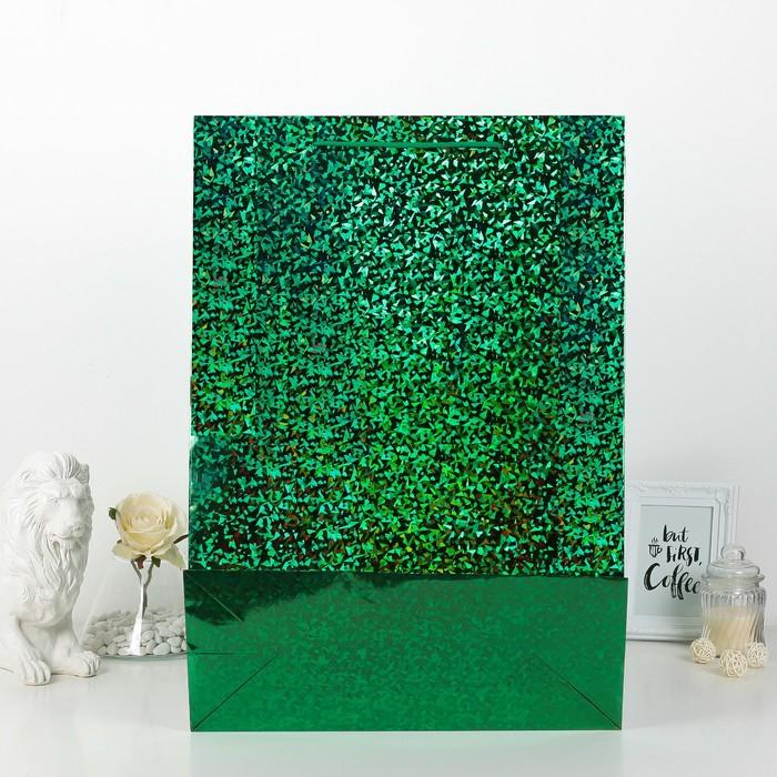 Пакет голографический, зелёный, рисунок МИКС, 42 х 18 х 60 см