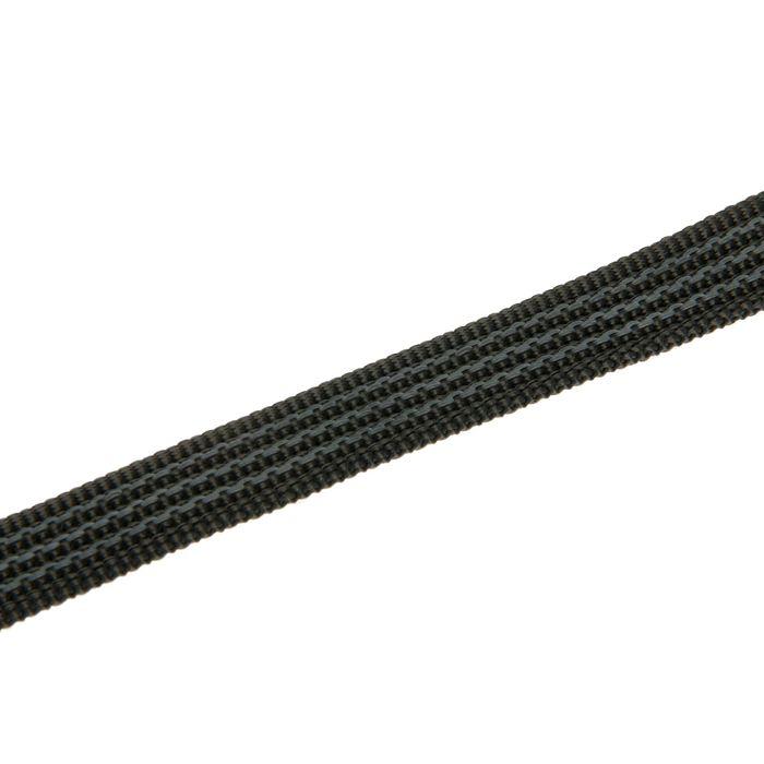Поводок нейлоновый двухсторонний, с латексной нитью, 10 м х 2 см, микс
