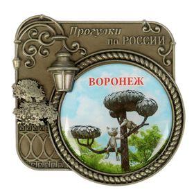 Магнит серия Прогулки по России «Воронеж», 6 х 6,1 см Ош