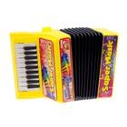 Музыкальная игрушка «Аккордеон», 10 мелодий, МИКС - фото 105637442