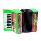 Музыкальная игрушка «Аккордеон», 10 мелодий, МИКС - фото 105637443