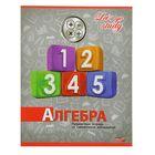 "Тетрадь предметнaя ""Серебро. Алгебра"", 36 листoв клетка, обложка картон хромэрзац"