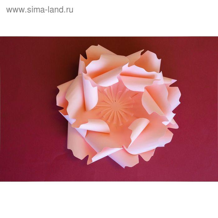 Комплект для сборки «Цветок с лепестками», из матовой бумаги, цвет розовый, 50 см.