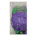 """Семена цветов Астра """"Вайолеттер"""", фиолетовая, автомат"""
