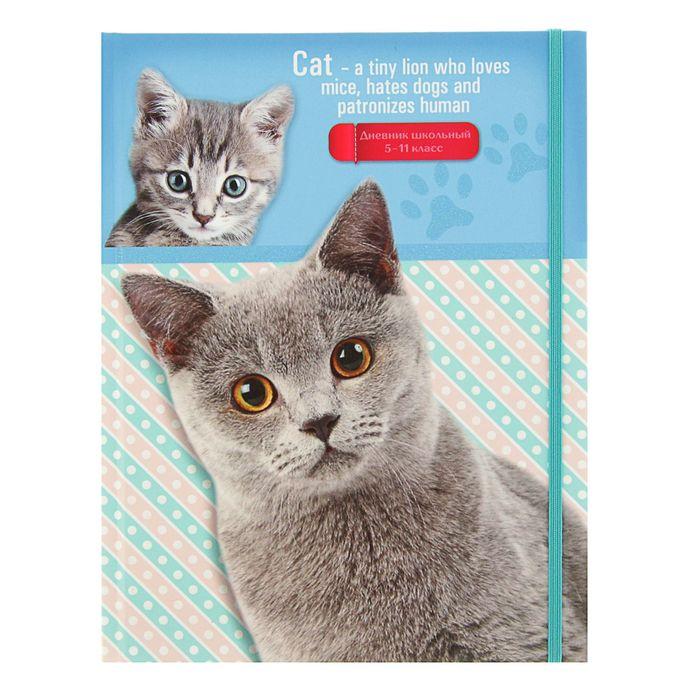 """Дневник для 1-4 класса, твердая обложка """"Кот и котенок"""", на резинке, глиттер, глянцевая ламинация, 48 листов"""