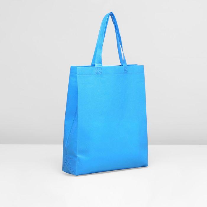 Сумка хозяйственная, 1 отдел, цвет голубой
