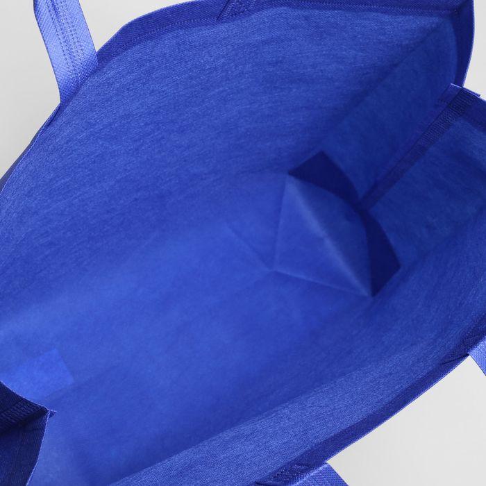 Сумка хозяйственная, 1 отдел, цвет синий
