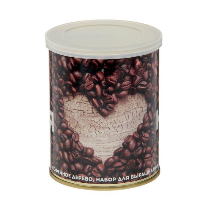 """Растущая травка в банке """"Я люблю..."""" (кофейное дерево)"""