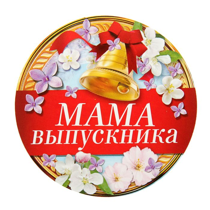 "Набор наклеек на одежду ""Мама выпускника"" 5 шт."
