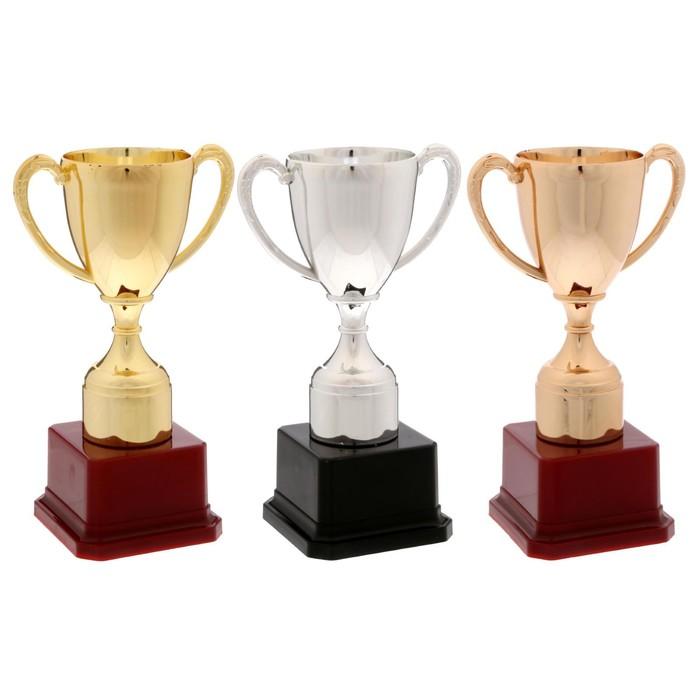 Кубок спортивный 113 цвет серебро