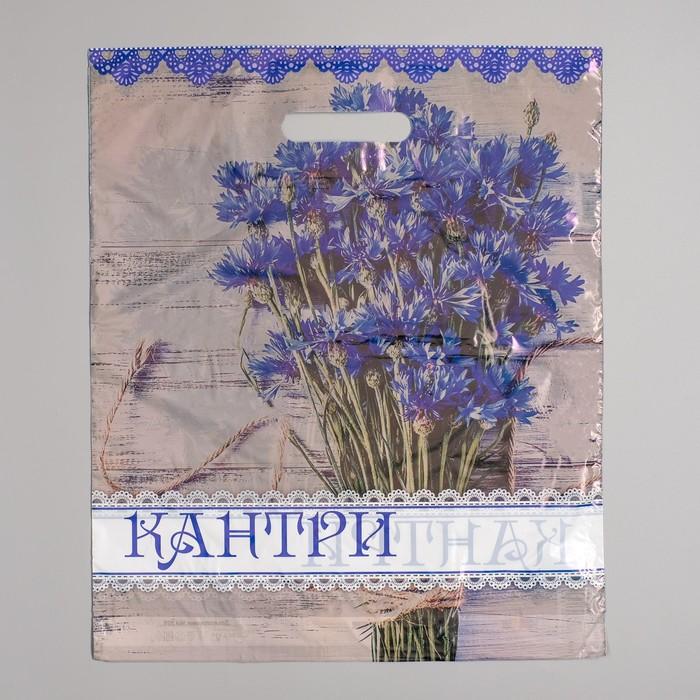 """Пакет """"Кантри"""", полиэтиленовый с вырубной ручкой 36 х 45 см, 35 мкм - фото 308983535"""