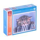Пазлы «Грустный котенок», 300 элементов