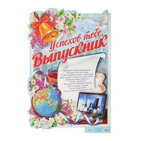 Плакат 'Успехов тебе, выпускник' Ош