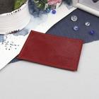 Футляр для карточки, игуана, цвет бордовый