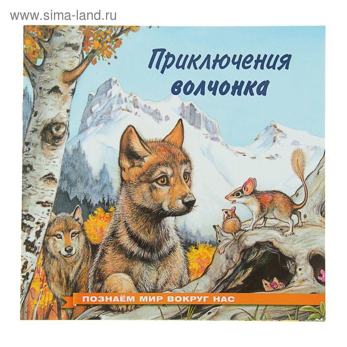 Познаем мир вокруг нас. Приключения волчонка