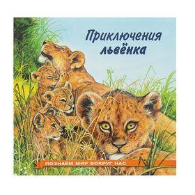 «Приключения львёнка», Гурина И. В.