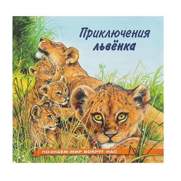 «Приключения львёнкаа», Гурина И. В. - фото 982297