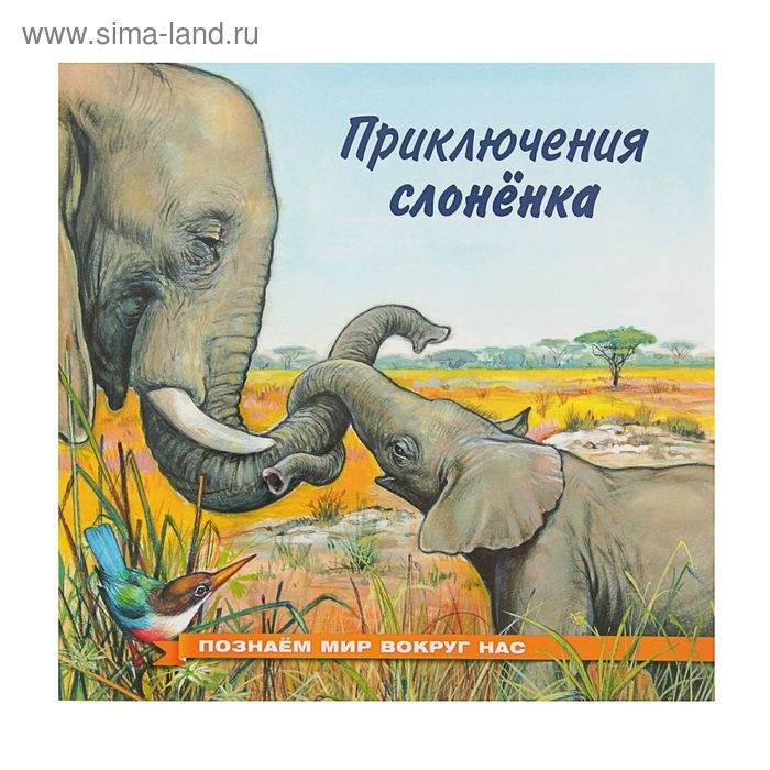 Познаем мир вокруг нас. Приключения слоненка