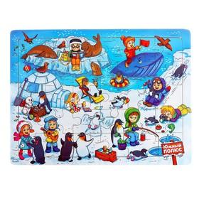Пазл большой «Южный полюс», 30 элементов