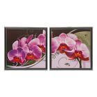 """Модульная картина в раме """"Розовая орхидея"""", 33×66 см"""