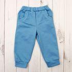 Брюки для мальчика, рост 80 см, цвет голубой 42546_М
