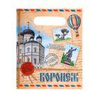 "Package polyethylene ""Voronezh"", the mail, 17 x 20 cm"
