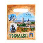 "Package polyethylene ""Tobolsk"", 17 x 20 cm"