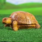 """Садовая фигура """"Мультяшная черепаха"""""""