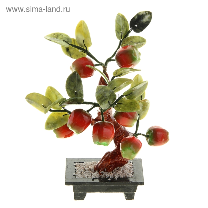 """Бонсай """"Восемь яблок"""""""