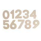 Набор деревянных заготовок «Цифры», 10 штук