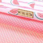 Набор ткани пэчворк «Сочный арбузик», 50 х 50 см