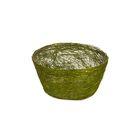 Кашпо, сизаль, круг, диффенбахия зелёное яблоко 8 х 17 см