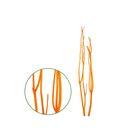 Ветки декоративные, митсумата, флок оранжевая 90-115 см, набор 3 шт