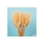 Трава сухоцвет, пшеница, натуральная 200 г