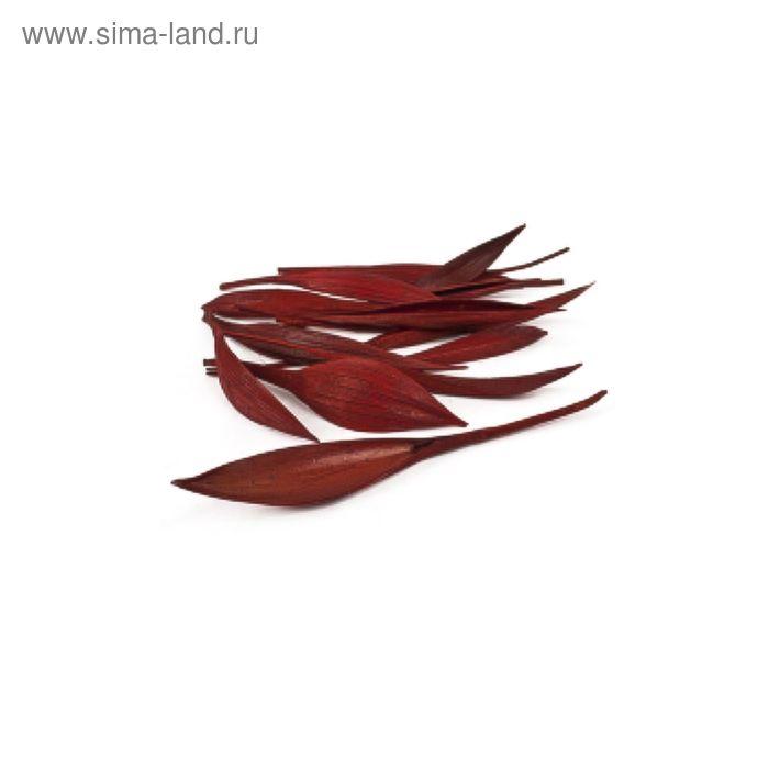 Трава сухоцвет, коко боут, мини красный 100 г