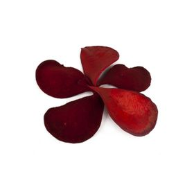 Плоды, элефант иэр красный, набор 5 шт