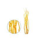 Ветки декоративные, митсумата, жёлтая 90-115 см, набор 5 шт