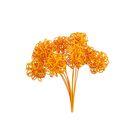 Ротанг шары-петельки на пике, ярко-оранжевый набор 10 шт