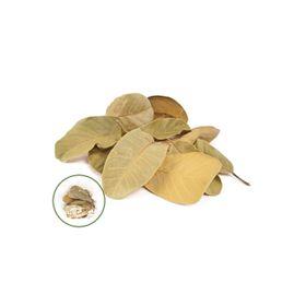 Листья маниока большие, натуральный 50 г