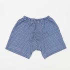 Трусы-шорты для мальчика, рост 110 см (30), цвет МИКС Т-796-01