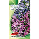 Семена цветов Обриета Весенняя красотка,смесь, многолетник, 0,05гр
