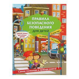 Правила безопасного поведения для детей. Василюк Ю. С.