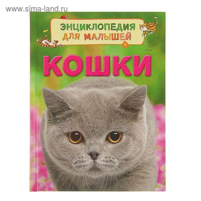 Энциклопедия для малышей «Кошки»