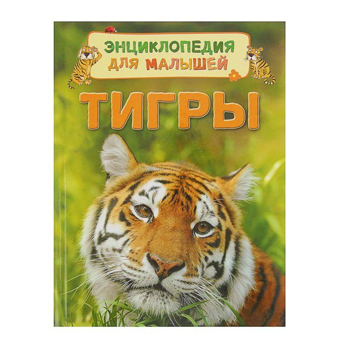 Энциклопедия для малышей «Тигры»