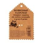Открытка со значком «Талисман от сглаза», 2,9 х 3,7 см - фото 7470402