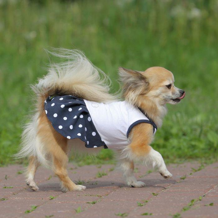 Платье OSSO для собак «Маленькая кокетка», размер 25, микс цветов