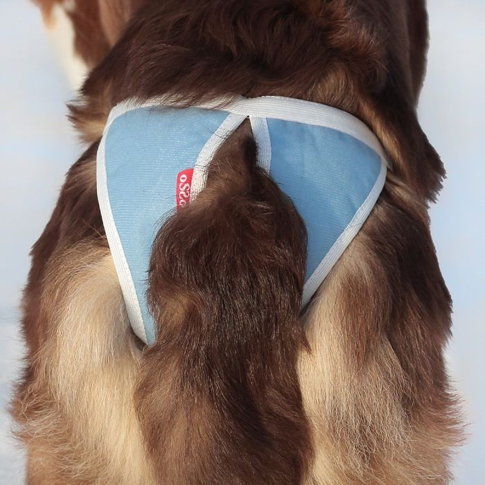 Трусы для собак многоразовые OSSO ABSORB, размер 3XL