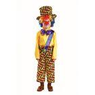 """Карнавальный костюм """"Клоун Петя"""", текстиль, рубаха, бриджи, шляпа, парик, нос, р-р 32, рост 122 см"""