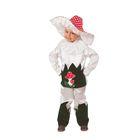 """Карнавальный костюм """"Грибок"""", текстиль, куртка, брюки, шляпа, р-р 30, рост 116 см"""